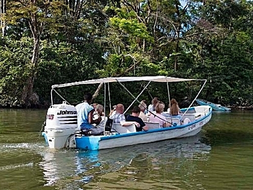 Puerto Limon tortuguera river cruise Shore Excursion Booking