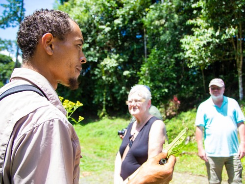 Puerto Limon Costa Rica aerial tram ride Shore Excursion Booking