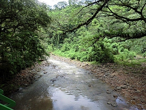 Puerto Caldera  Costa Rica nature Sightseeing Shore Excursion Reservations