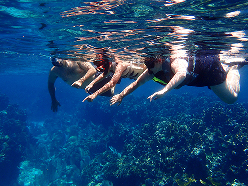 Roatan  Honduras French Key Snorkel Tour Cost