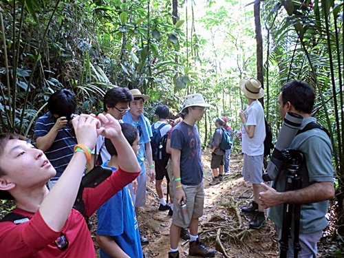 Puntarenas Costa Rica rain forest Excursion Reviews