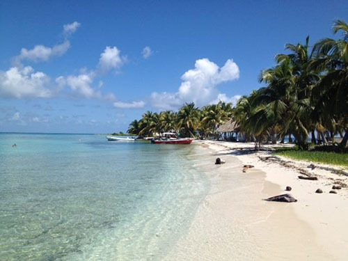 Harvest Caye Discover Scuba Cruise Excursion Cost