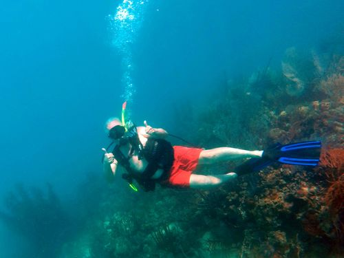 Harvest Caye Harvest Caye Scuba Diving Trip Booking