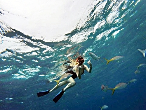 Grand Turk shallow reef snorkel Shore Excursion Reservations