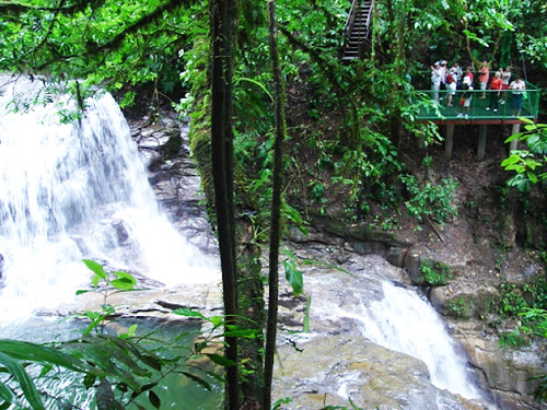 Puerto Limon Costa Rica aerial tram ride Cruise Excursion Reviews