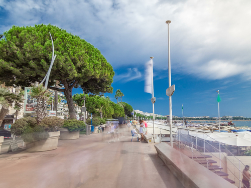 Monte Carlo  Monaco Cannes Film Festival Cruise Excursion Prices