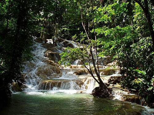 Ocho Rios Falls Tubing Shore Excursions Reviews