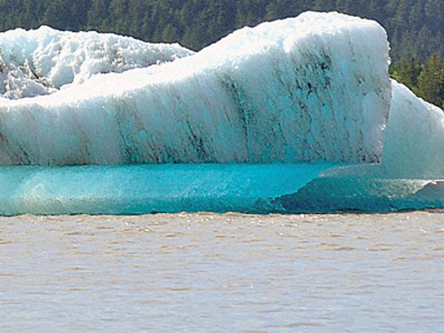 Juneau guided mendenhall glacier Tour Reservations