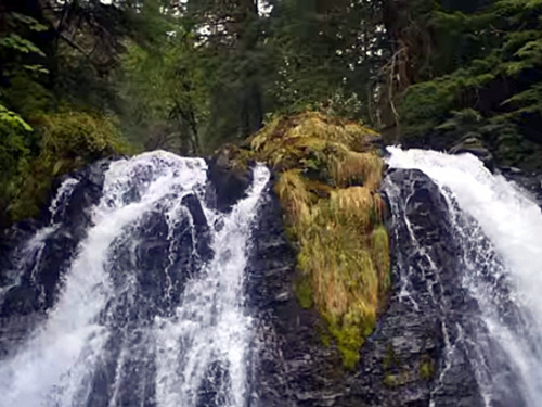 Juneau nature sightseeing Tour Reservations
