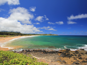 Kauai Exclusive North and East Coast Sightseeing Excursion