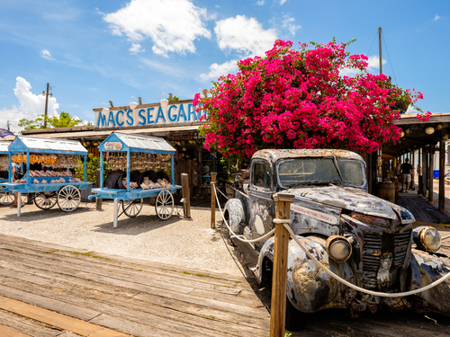 Key West trolley bus Trip Reviews