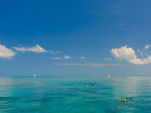 Key West snorkel Trip Reviews