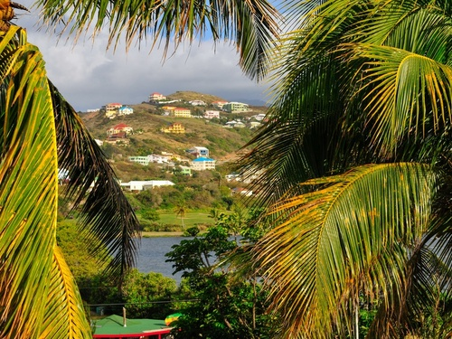 St. Kitts carving rocks Cruise Excursion Reviews