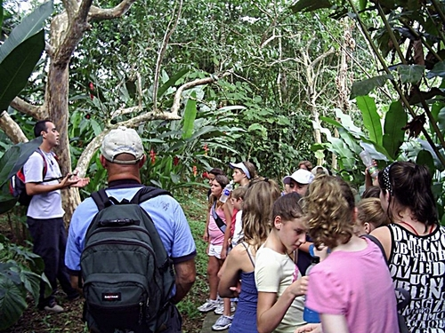 Puntarenas rain forest Tickets Booking