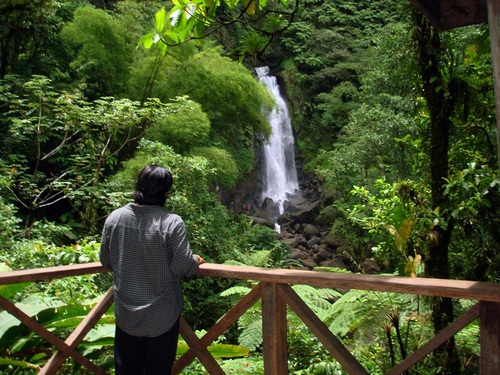 Dominica Roseau Titou Gorge Trip Reviews
