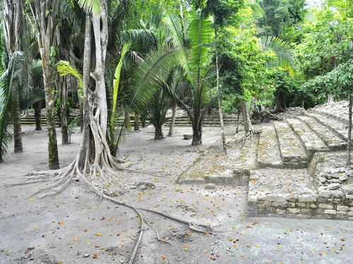 Mahahual Chacchoben Mayan Ruins Shore Excursion Tickets
