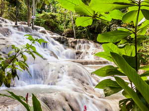 Montego Bay Dunn's River Falls, Shopping, Lunch and Ocho Rios Sightseeing Excursion