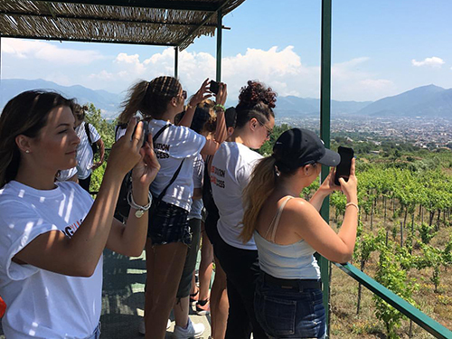Naples  Italy vineyard Walking Excursion Reservations