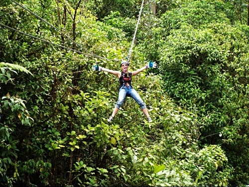 Puerto Limon canopy zipline Cruise Excursion