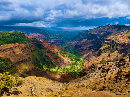 Kauai (Nawiliwili) Hawaii / USA Waimea canyon Cruise Excursion Reviews