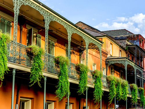 New Orleans Tulane and Loyola Universities Cruise Excursion Cost