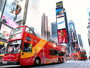 New York Downtown Hop On Hop Off Sightseeing Excursion