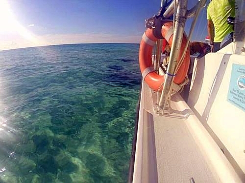 Grand Cayman scuba diving Trip Prices