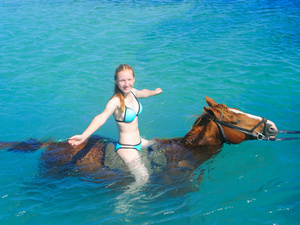 Ocho Rios Horseback Riding and Ocean Swim Excursion at Private Beach