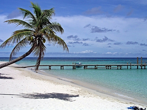 Roatan beach break Shore Excursion Tickets