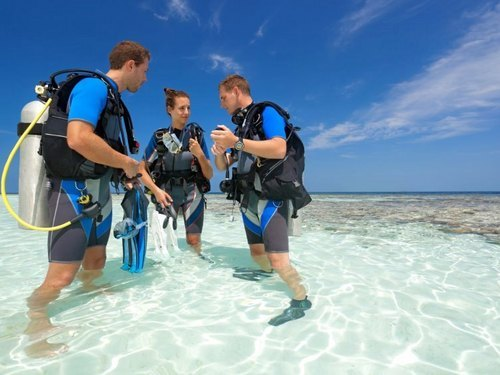Grand Cayman Discover SCUBA Dive Tickets Prices