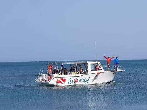 Roatan  Honduras Colorful Fish Diving Shore Excursion Booking