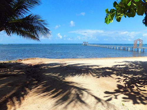 Roatan  Honduras  Excursion Booking