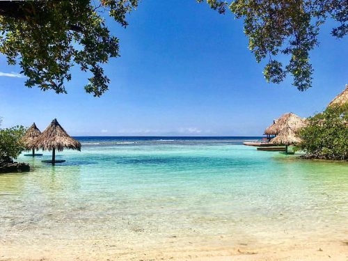 Roatan  Honduras Family Snorkel Tour Prices