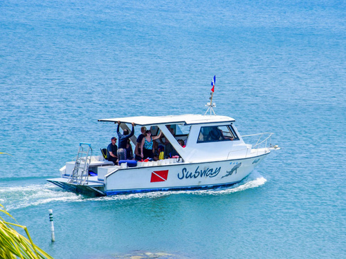 Roatan  Honduras Prince Albert Diving Cruise Excursion Reservations