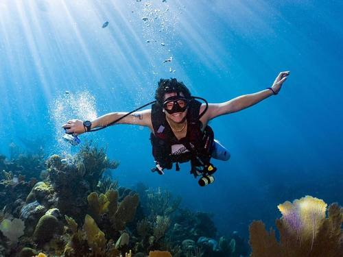 Roatan Marys Place Diving Excursion Reservations
