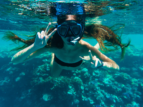 Roatan Swimming Shore Excursion Tickets