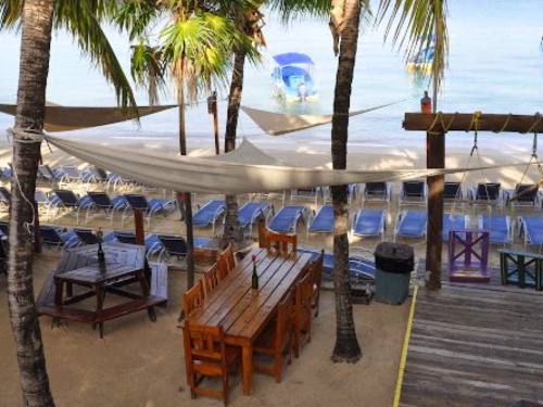 Roatan beach day Tour Reviews