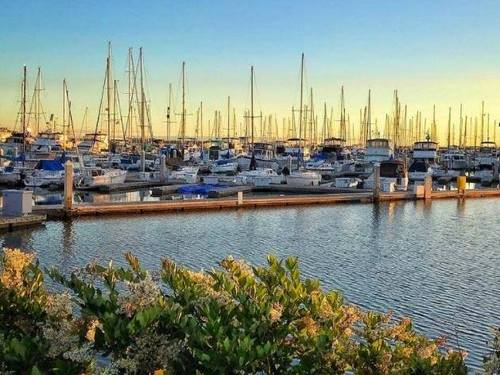 San Diego Sea and Land  SEAL Shore Excursion Prices