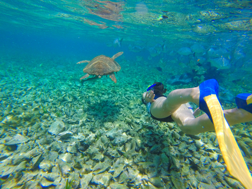 Belize caye caulker Excursion Prices