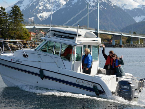 Sitka Bald Eagle Sightseeing Trip Booking