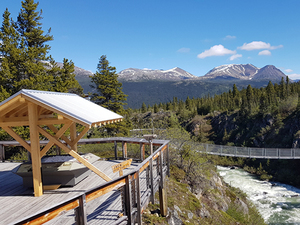 Skagway Combo White Pass Summit, Yukon Suspension Bridge and Dyea Nature Excursion
