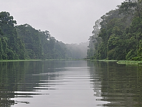 Puerto Limon tortuguera river cruise Shore Excursion Reviews