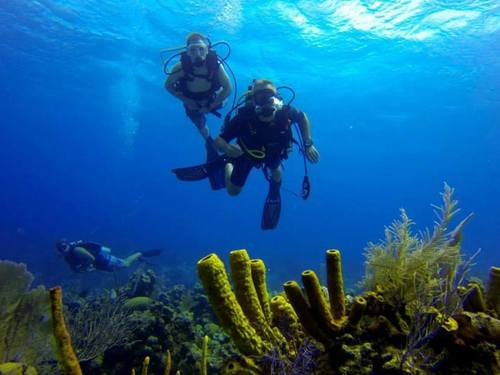 Grand Cayman scuba Tour Reservations