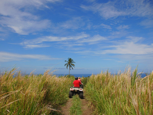 St. Kitts ATV Trip Booking