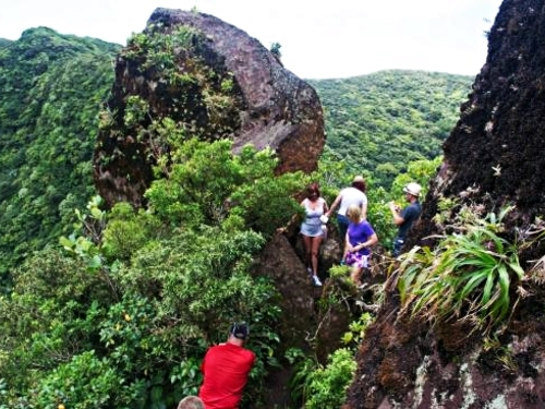 St. Kitts Basseterre Hiking Cruise Excursion Reviews