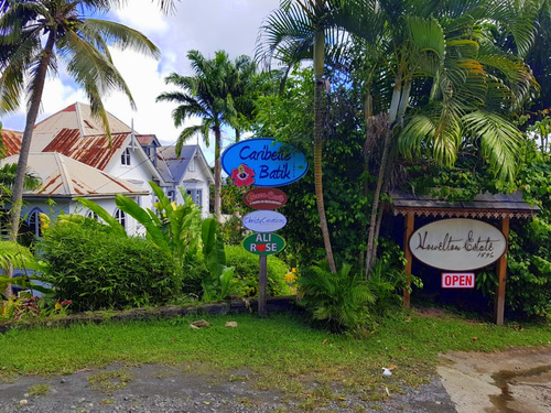 St. Lucia (Castries)  West Indies stony hill Trip Reviews