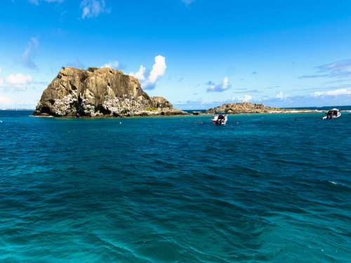 St. Maarten snorkel Tour Reviews