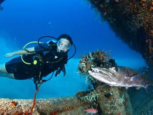 St. Maarten SCUBA Diving Excursion by Boat