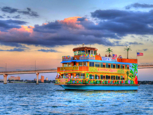 Tampa  US dolphin watching Cruise Excursion Prices