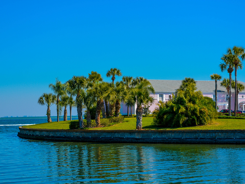 Tampa  US dolphin watching Tour Cost